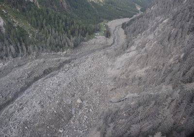 Deposited debris at the upper Bondasca valley with dust covered trees right after the event of 23 August 2017.