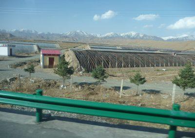 Grosse Gebiete werden landwirtschaftlich genutzt.