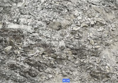 Detailed view of the Moosfluh landslide with the dedicated image viewer of the online data portal.
